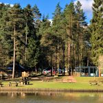 mallards lake dog walking trail running forest of dean picnic